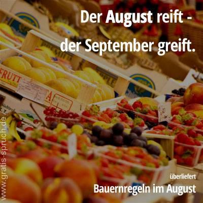 Sprüche Im August Gratis Spruchde