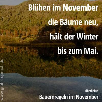 Spruche Im November Gratis Spruch De