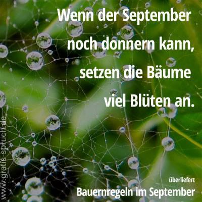 Sprüche Im September Gratis Spruchde